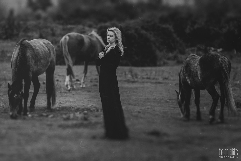 0401_model_photoshoot_clonmel_photographer_tipperary_ireland_photography_portrait_creative_dreamy_ethereal_horse_field_black_dress_dreamscape_romantic_berit_alits_