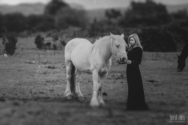 0501_model_photoshoot_clonmel_photographer_tipperary_ireland_photography_portrait_creative_dreamy_ethereal_horse_field_black_dress_dreamscape_romantic_berit_alits_