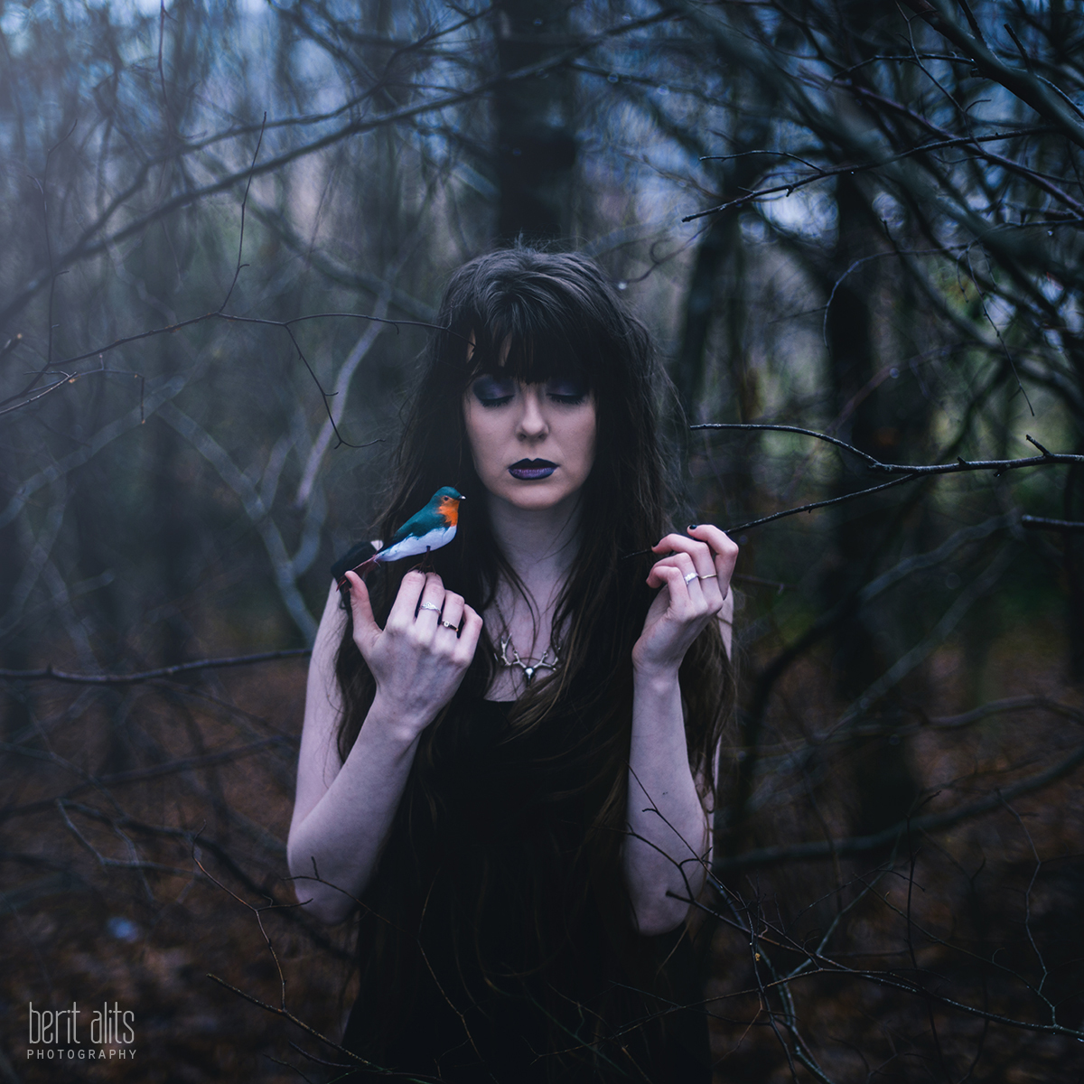 01_creative_portrait_photoshoot_artistic_romantic_ethereal_dreamy_fine_art_conceptual_book_cover_trees_bare_branches_forest_winter_bird_girl_cold_long_hair_black_dress_makeup_whisperer_nature_dark_nikon_d800_50_mm_light_clonmel_tipperary_ireland